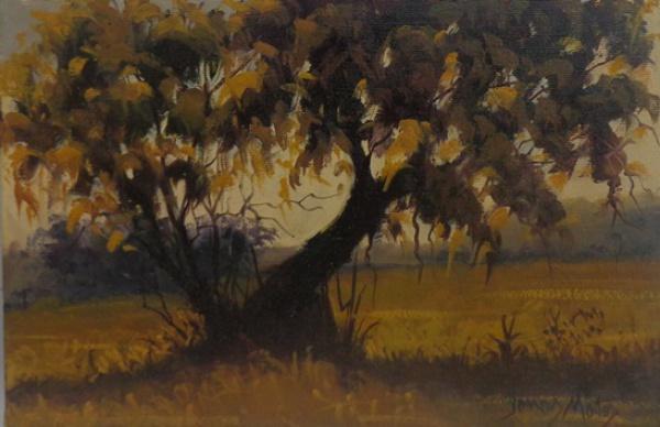 JONAS MATOS, óleo sobre tela, representando paisagem, medindo 30 x 20 cm. Sem moldura.
