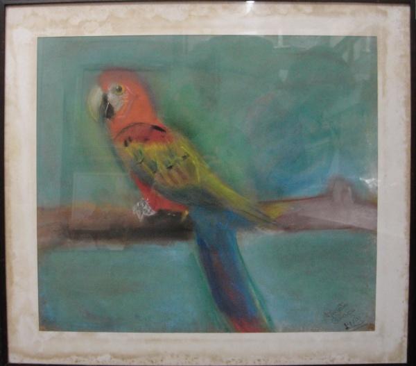 AM071, RENATA COLAÇO, pastel sobre papel, representando arara, medindo 47 x 41 cm.