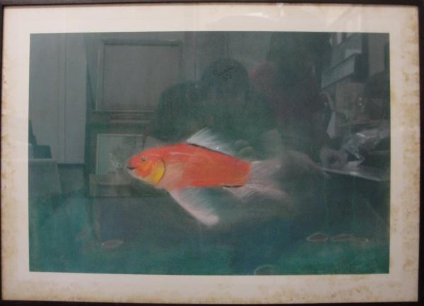 AM071, RENATA COLAÇO, pastel sobre papel, representando peixe, medindo 52 x 34 cm.