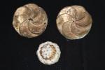 Três talhas em madeira com folha de patina no feitio de rosácea.