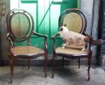 Belíssimas cadeiras com braços  medalhão em jacarandá.