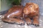 """ART POPULAR - Escultura de grandes proporções, esculpidas em bloco de madeira, representando """"Leoa"""". Med.: 1,07 X 86 X 55 cm."""
