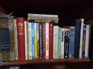 LIVRO (25) - Diversos temas, autores e editoras. Alguns no estado.