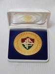 NU,ISMÁTICA - Medalha em metal amarelo esmaltada com escudo do clube Fluminense Footbal Club. Campeão do Brasil, 1984.