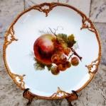 KPM - BERLIN - Lindo prato , circa de 1900 , em porcelana alemã esmaltada e vitrificada com pintura de penca de fruta policromada ao centro e bordas com moldura em ouro brunido em alto relevo. Diâmetro 22 cm.