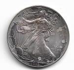 EUA - PRATA 999 - 1 DOLLAR - ANO 2013 - PESO: 31.10 GRAMAS - DIAMETRO: 40 MM - VALOR ESTIMATIVO DE MERCADO: R$ 280,00 - CONSERVAÇÃO: FC = FLOR DE CUNHO