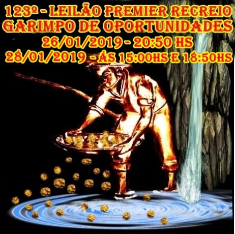 123º - LEILÃO PREMIER RECREIO- GARIMPANDO OPORTUNIDADES.