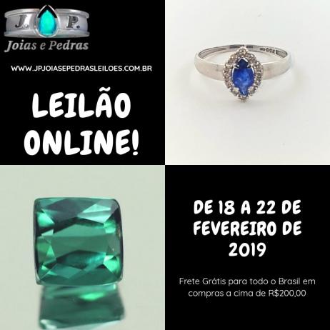 2º Leilao 2019 - FRETE GRATIS