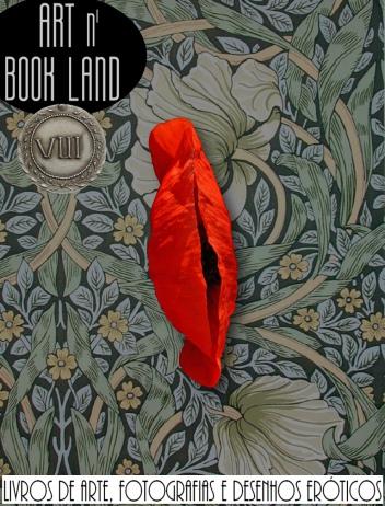 Art n Book Land 8 - leilão residencial - livros de arte, fotografias, prints e desenhos eróticos