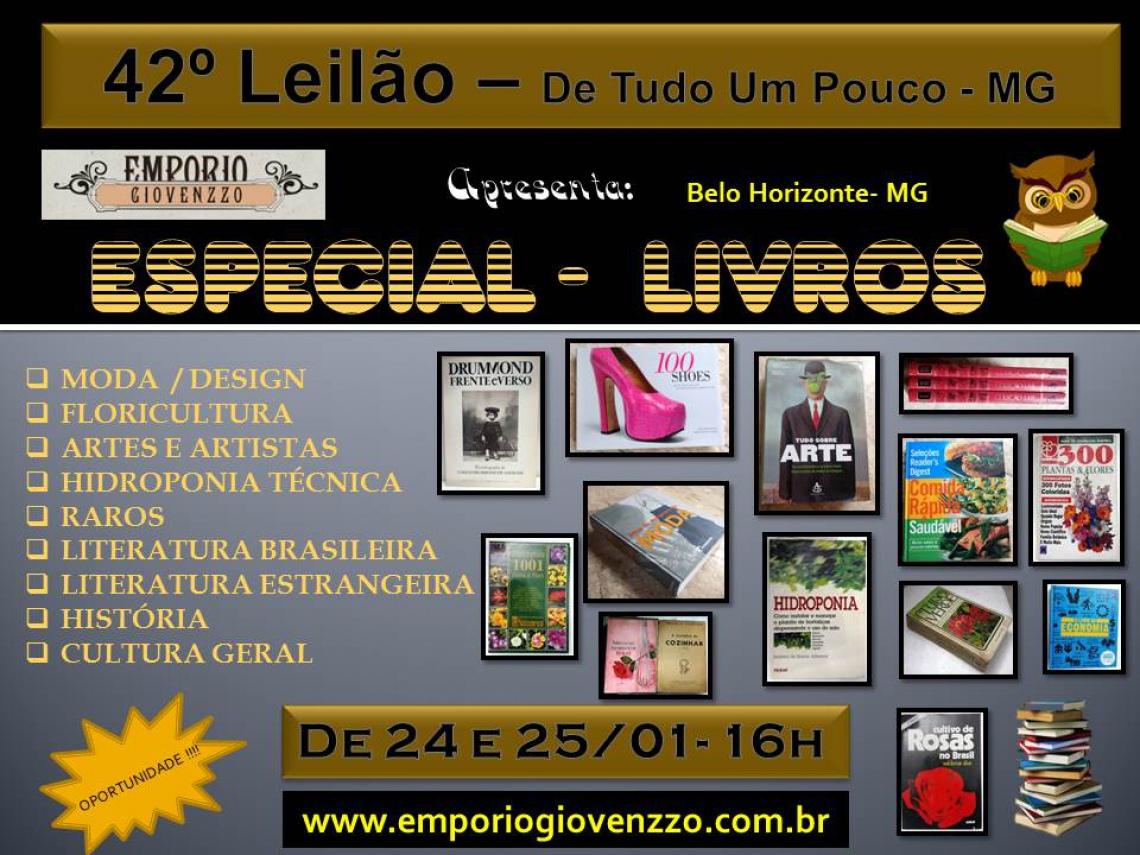 42º LEILÃO DE TUDO UM POUCO - MG -  ESPECIAL - LIVROS