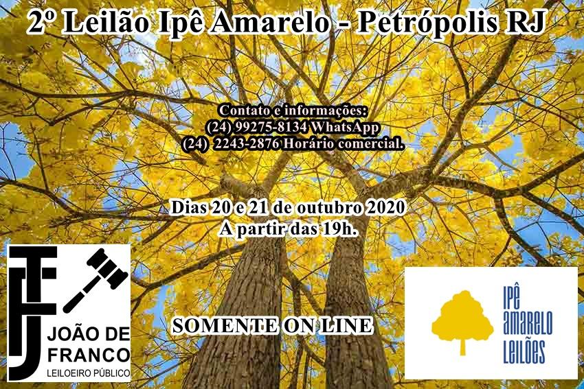 2º LEILÃO IPÊ AMARELO - COLECIONISMO - ARTES - ANTIGUIDADES