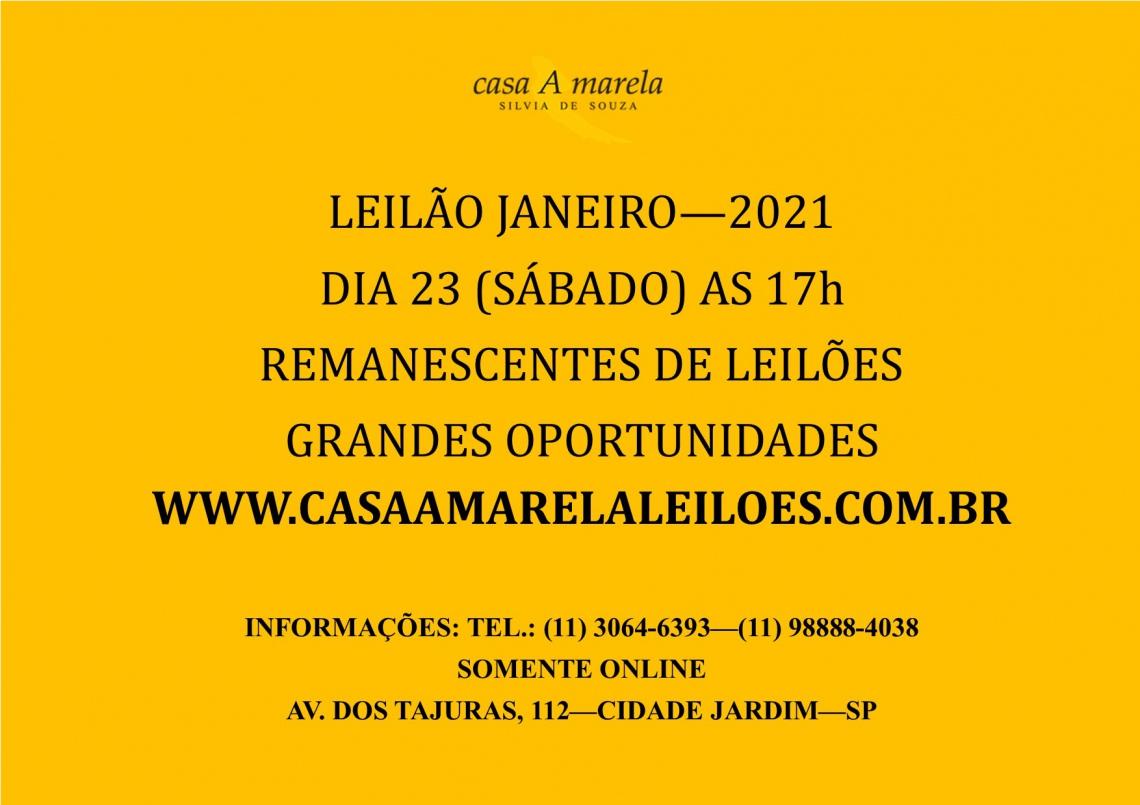 LEILÃO JANEIRO 2021