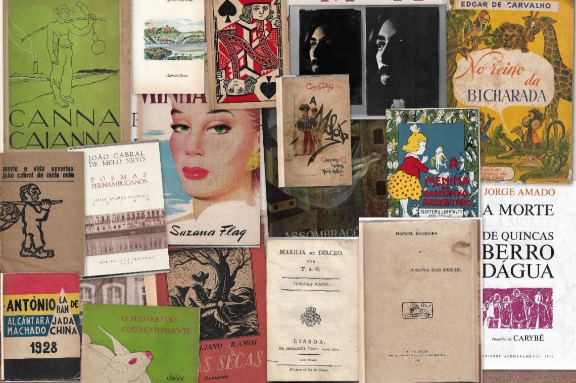 I Leilão da Livraria Susanne Bach- Literatura Brasileira