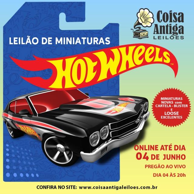LEILÃO DE MINIATURAS HOT WHEELS - COISA ANTIGA LEILÕES